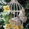Vintage Bird Cage Ornament