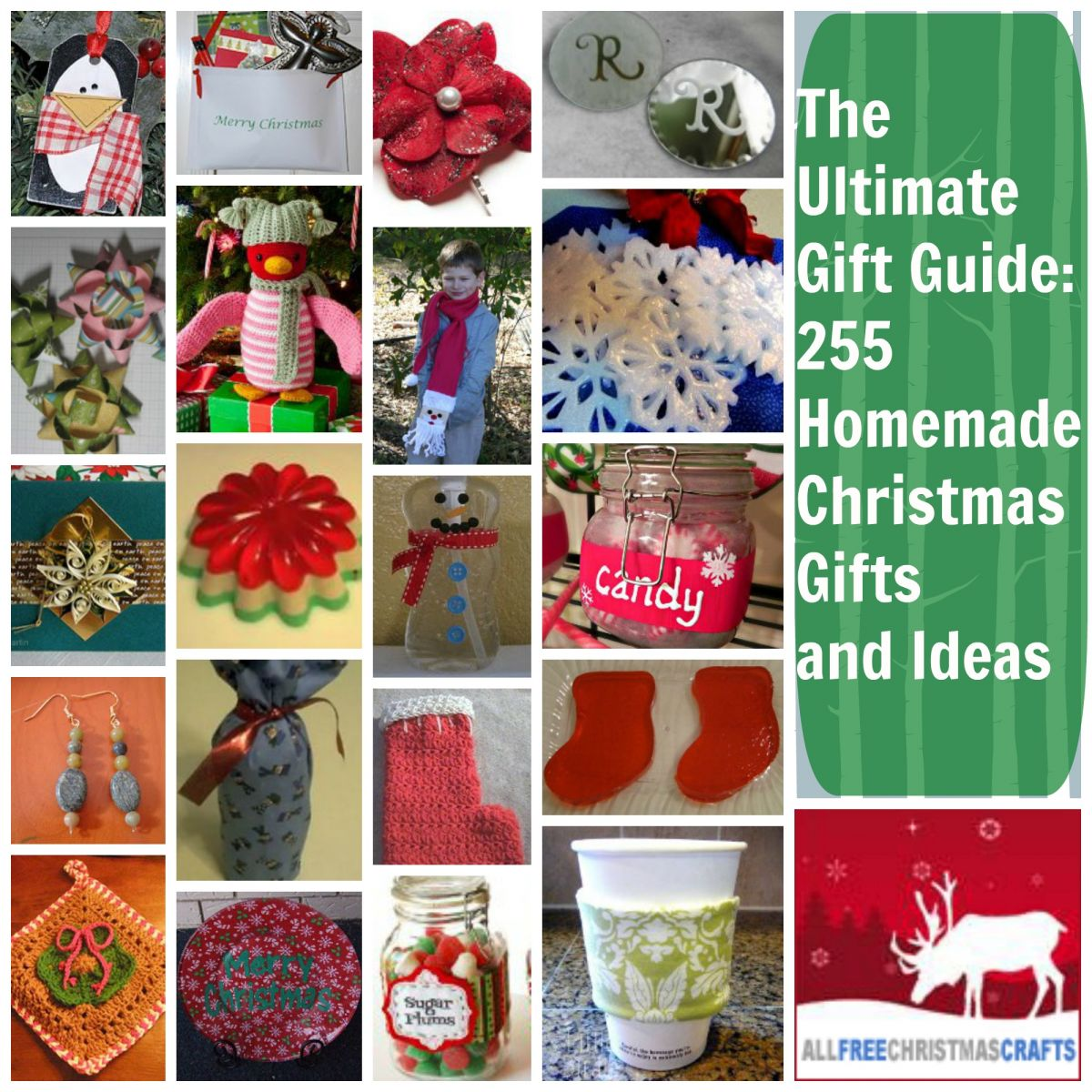 The ultimate gift guide 255 homemade christmas gifts and Homemade christmas gifts