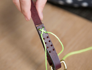 DIY Graphic Leather Dog Leash